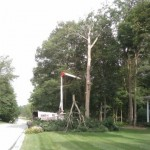 Tree Removal Service Fort Wayne