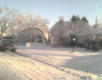 Ice Storm Tree Damage
