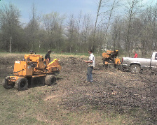 grinding a tree stump removal