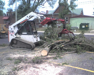 Tree Cutting Fort Wayne